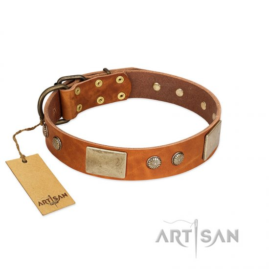 happy tails artisan collars