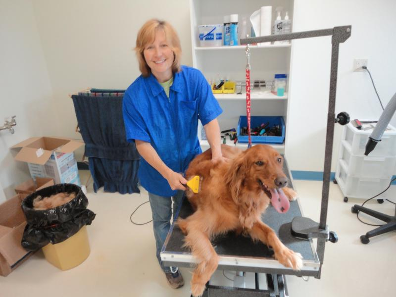 Happy Tails Pet Grooming amp; Boarding